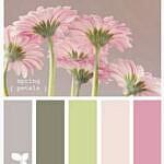 MMM color inspiration challenge