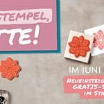 Werde Stampin' Up! Demo ..