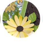Gänseblümchenglück – Projekt-Kit